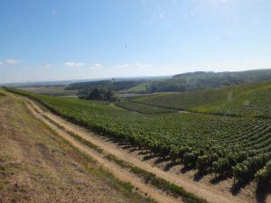 Gite Chez Jeannine à Fontaine Les vignes